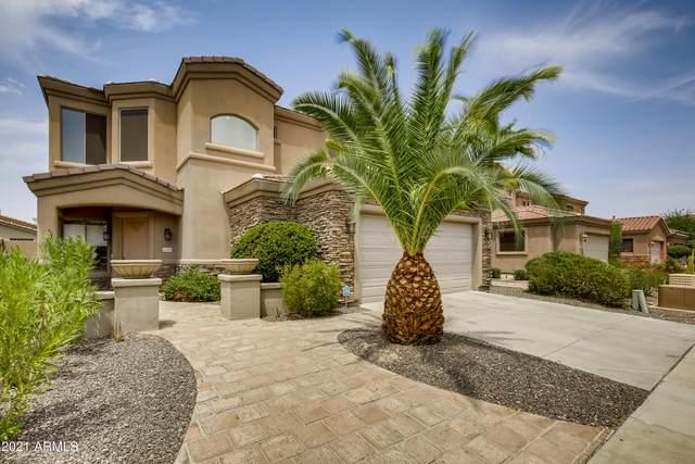 3320 E Briarwood Terrace, Phoenix, AZ 85048 (MLS #6263799) :: Devor Real Estate Associates