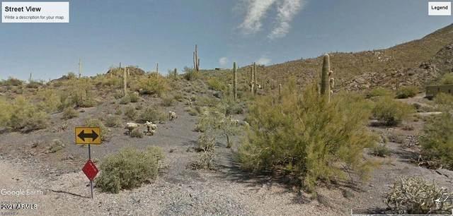 37502 N Sunset Trail, Cave Creek, AZ 85331 (MLS #6263889) :: The Copa Team | The Maricopa Real Estate Company