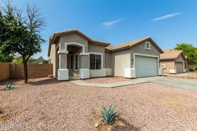 5703 W Novak Way, Laveen, AZ 85339 (MLS #6264579) :: Yost Realty Group at RE/MAX Casa Grande
