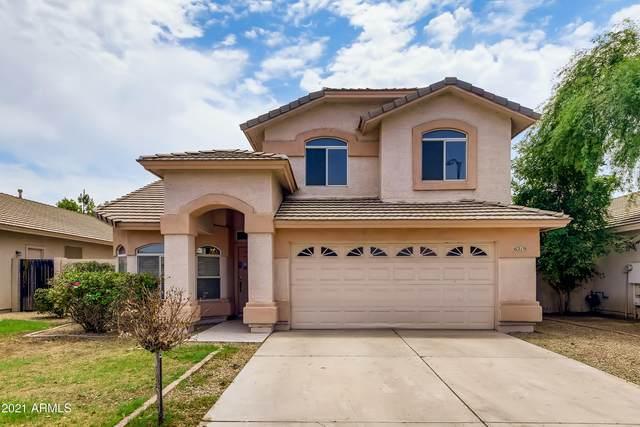 6219 W Navajo Drive, Glendale, AZ 85302 (MLS #6265171) :: Yost Realty Group at RE/MAX Casa Grande