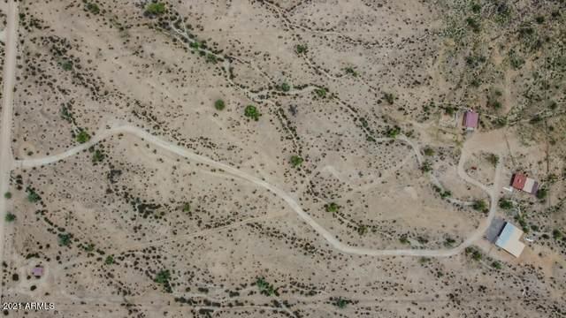 54401 W Quail Run Road, Maricopa, AZ 85139 (MLS #6265226) :: Fred Delgado Real Estate Group