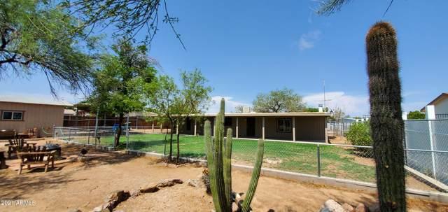 20016 N 29TH Street, Phoenix, AZ 85050 (MLS #6265944) :: Maison DeBlanc Real Estate