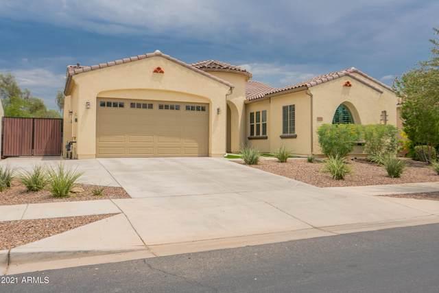 19560 E Apricot Lane, Queen Creek, AZ 85142 (MLS #6266043) :: Yost Realty Group at RE/MAX Casa Grande
