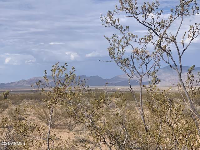 TBD Mineral Rd 5 Acres, Dolan Springs, AZ 86441 (MLS #6266078) :: The Garcia Group