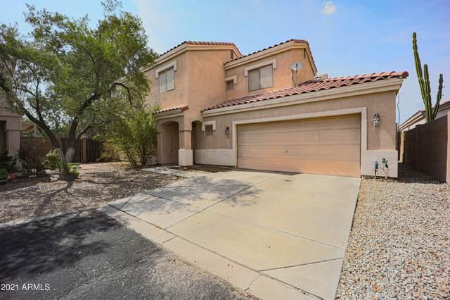 1750 W Union Hills Drive #81, Phoenix, AZ 85027 (MLS #6266251) :: Yost Realty Group at RE/MAX Casa Grande