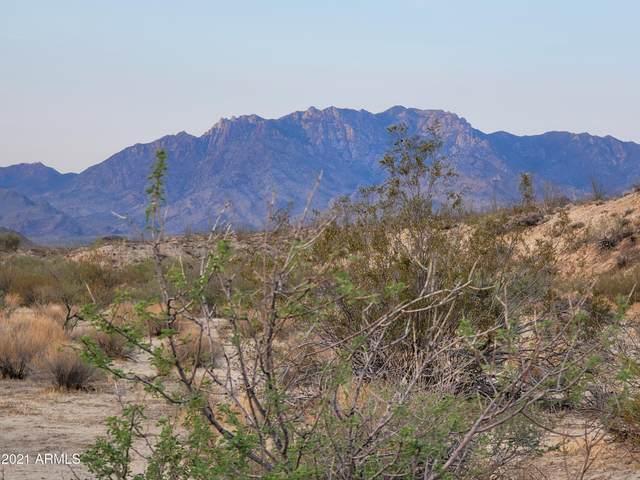 TBD Apex Rd. 3.45 Acres, Yucca, AZ 86438 (MLS #6266309) :: The Newman Team