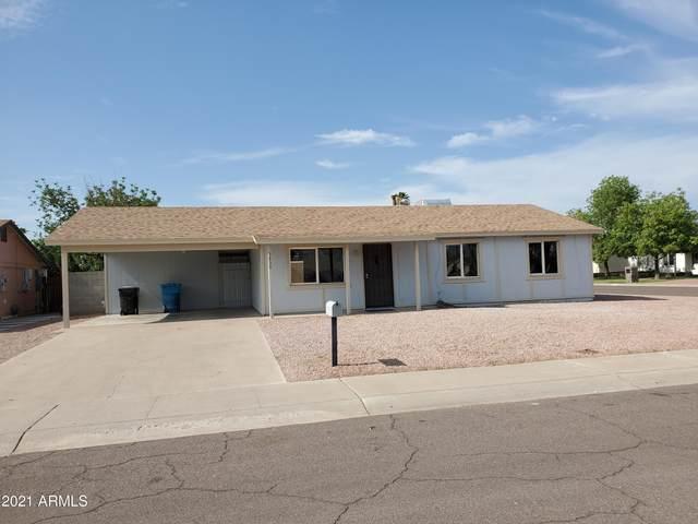 3830 E Evans Drive, Phoenix, AZ 85032 (MLS #6266549) :: Yost Realty Group at RE/MAX Casa Grande