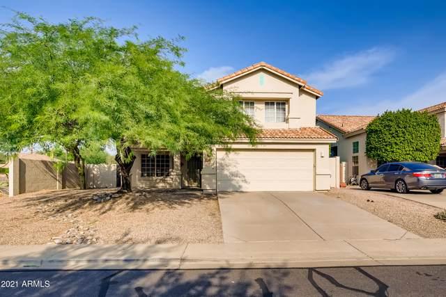 3647 N Sapphire, Mesa, AZ 85215 (MLS #6267207) :: Yost Realty Group at RE/MAX Casa Grande