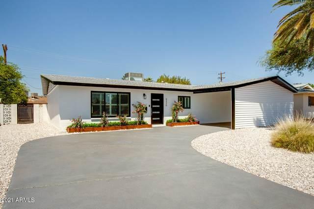 6326 N 86TH Street N, Scottsdale, AZ 85250 (MLS #6267211) :: Yost Realty Group at RE/MAX Casa Grande