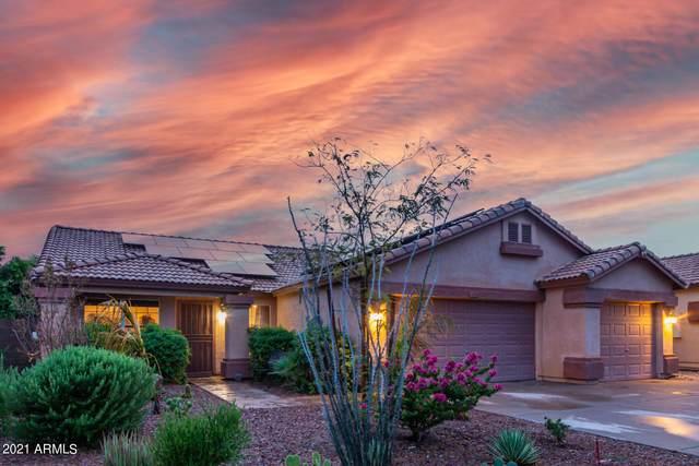 21416 N 33rd Drive, Phoenix, AZ 85027 (MLS #6267361) :: Yost Realty Group at RE/MAX Casa Grande