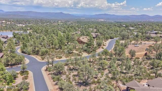 807 N Desert Mimosa Circle, Payson, AZ 85541 (MLS #6267823) :: Service First Realty