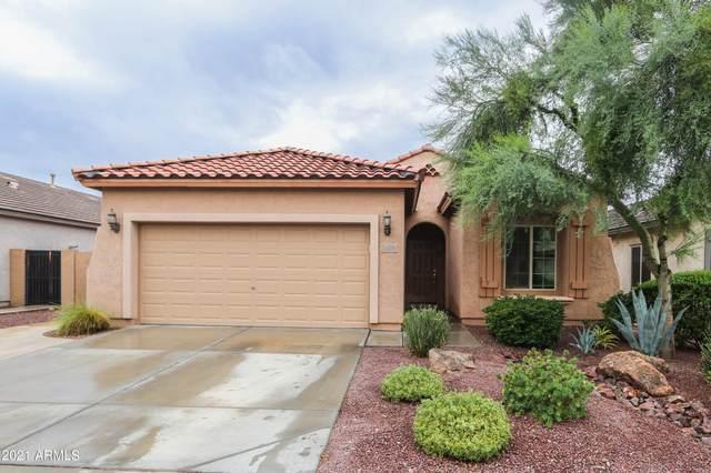 11021 E Storia Avenue, Mesa, AZ 85212 (MLS #6268600) :: Yost Realty Group at RE/MAX Casa Grande