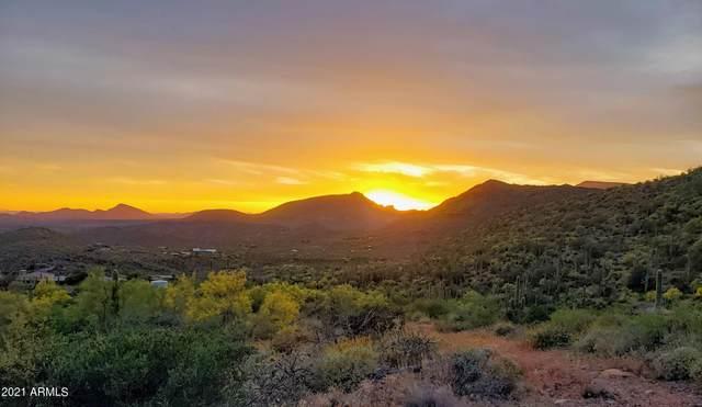 7850 E Fleming Springs Road, Cave Creek, AZ 85331 (MLS #6268614) :: The Newman Team