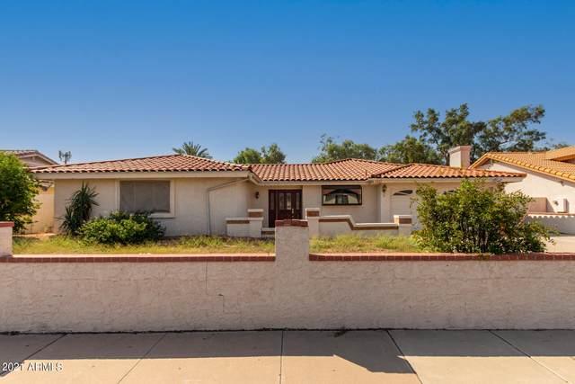 5137 W Christy Drive, Glendale, AZ 85304 (MLS #6269141) :: Elite Home Advisors