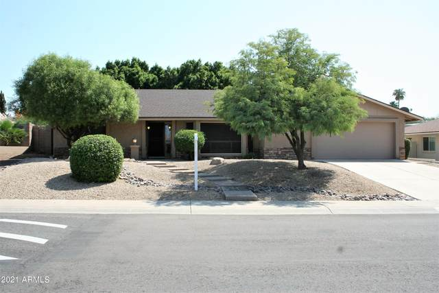 14417 N 10TH Street, Phoenix, AZ 85022 (MLS #6269151) :: Yost Realty Group at RE/MAX Casa Grande