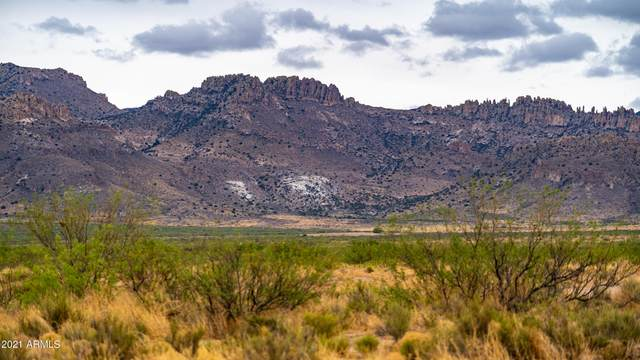 Three Triangle Ranches Unit 1 Lot 38, Portal, AZ 85632 (MLS #6269313) :: Dave Fernandez Team | HomeSmart