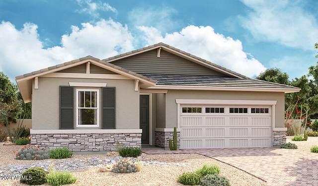 562 E Angel Drive, Chandler, AZ 85249 (MLS #6269650) :: Yost Realty Group at RE/MAX Casa Grande