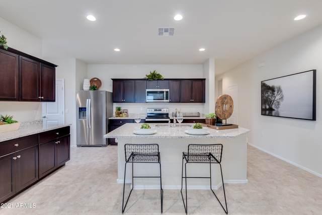 9404 E Grapefruit Drive, Florence, AZ 85132 (MLS #6269976) :: Yost Realty Group at RE/MAX Casa Grande