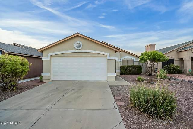 3174 W Williams Drive, Phoenix, AZ 85027 (MLS #6269988) :: Yost Realty Group at RE/MAX Casa Grande