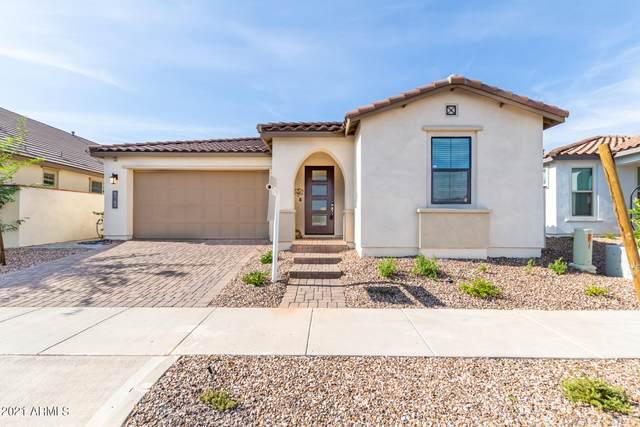 9762 E Resistance Avenue, Mesa, AZ 85212 (MLS #6270027) :: Yost Realty Group at RE/MAX Casa Grande