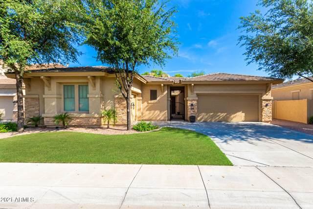 3278 E Goldfinch Way, Chandler, AZ 85286 (MLS #6270087) :: Executive Realty Advisors