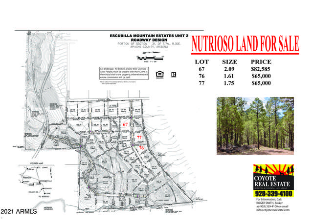 22 County Road 2223, Nutrioso, AZ 85932 (#6270198) :: Luxury Group - Realty Executives Arizona Properties