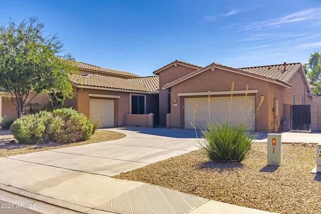 2669 E Kaibab Place, Chandler, AZ 85249 (MLS #6271104) :: Klaus Team Real Estate Solutions