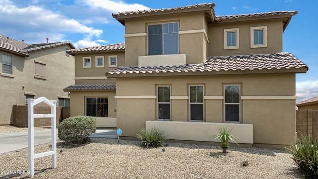 16513 W Hadley Street, Goodyear, AZ 85338 (MLS #6271372) :: Yost Realty Group at RE/MAX Casa Grande