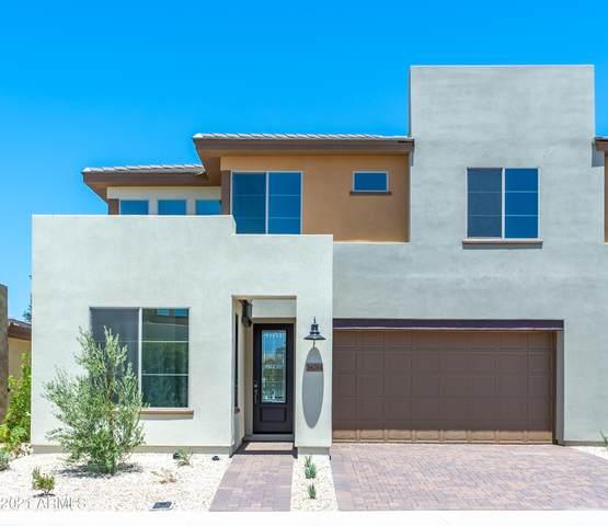36264 N Desert Tea Drive, Queen Creek, AZ 85140 (MLS #6271645) :: Keller Williams Realty Phoenix