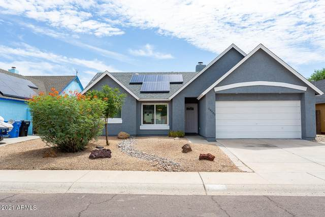 19407 N 8th Avenue, Phoenix, AZ 85027 (MLS #6272427) :: Yost Realty Group at RE/MAX Casa Grande