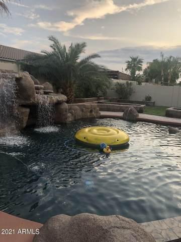 19387 E Reins Road, Queen Creek, AZ 85142 (MLS #6272557) :: Arizona 1 Real Estate Team