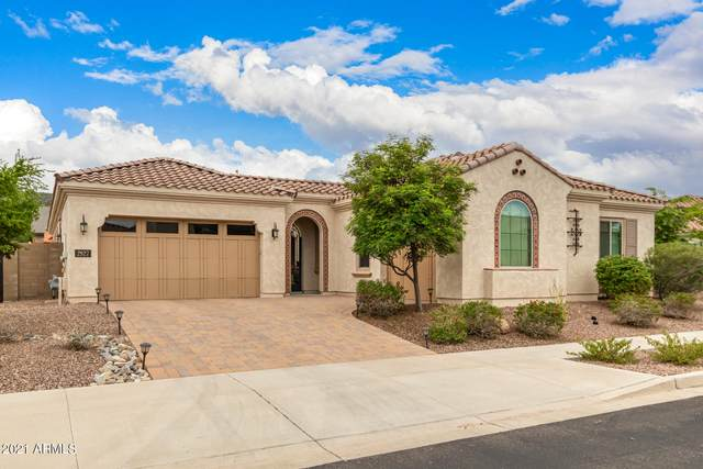 2927 E Constance Way, Phoenix, AZ 85042 (MLS #6272565) :: Elite Home Advisors