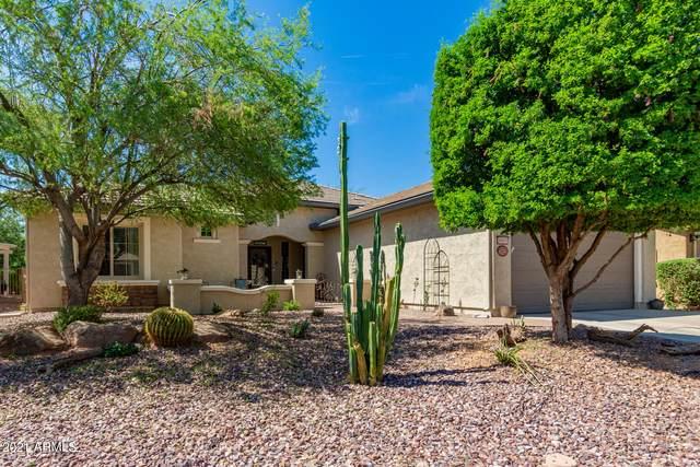6903 W Saratoga Way, Florence, AZ 85132 (MLS #6272763) :: Keller Williams Realty Phoenix