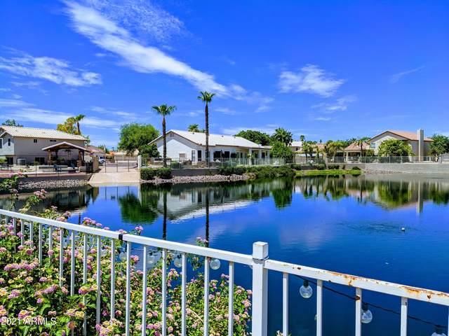 7204 W Kimberly Way, Glendale, AZ 85308 (MLS #6272813) :: The AZ Performance PLUS+ Team