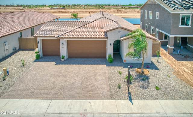 40557 W Little Drive, Maricopa, AZ 85138 (MLS #6272890) :: Justin Brown | Venture Real Estate and Investment LLC