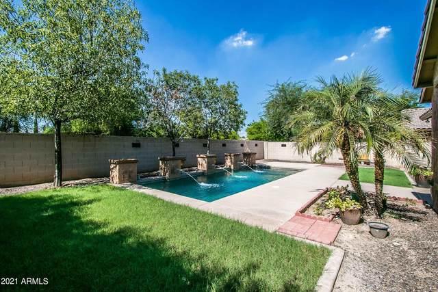 5436 W Coles Road, Laveen, AZ 85339 (MLS #6272912) :: Hurtado Homes Group