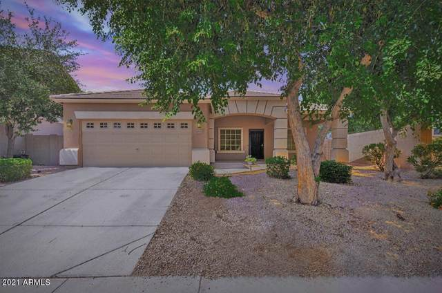 11692 N 164TH Drive, Surprise, AZ 85388 (MLS #6272993) :: Long Realty West Valley