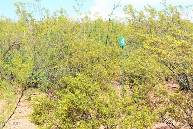 TBD E Elijah Place, Huachuca City, AZ 85616 (MLS #6273122) :: Yost Realty Group at RE/MAX Casa Grande