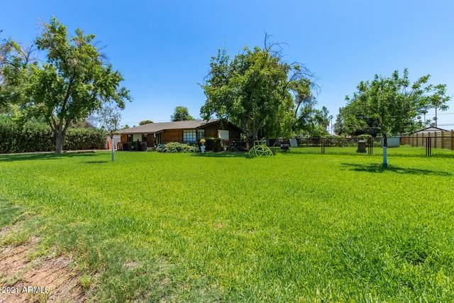 1721 W Elm Street, Phoenix, AZ 85015 (MLS #6273203) :: Long Realty West Valley