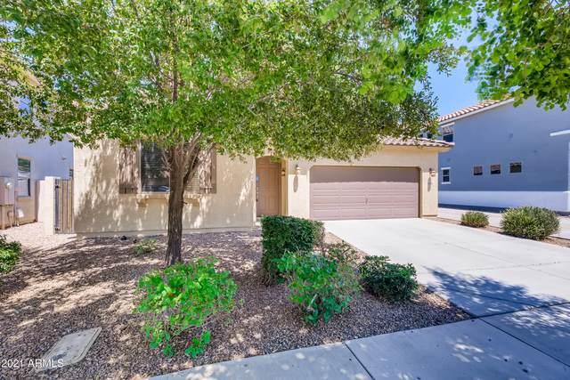 4126 E Thunderheart Trail, Gilbert, AZ 85297 (MLS #6273459) :: Yost Realty Group at RE/MAX Casa Grande