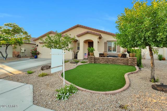 9164 W Hedge Hog Place, Peoria, AZ 85383 (MLS #6273500) :: Yost Realty Group at RE/MAX Casa Grande