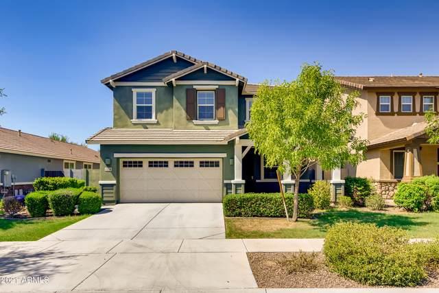 7228 E Olla Avenue, Mesa, AZ 85212 (MLS #6273564) :: Yost Realty Group at RE/MAX Casa Grande
