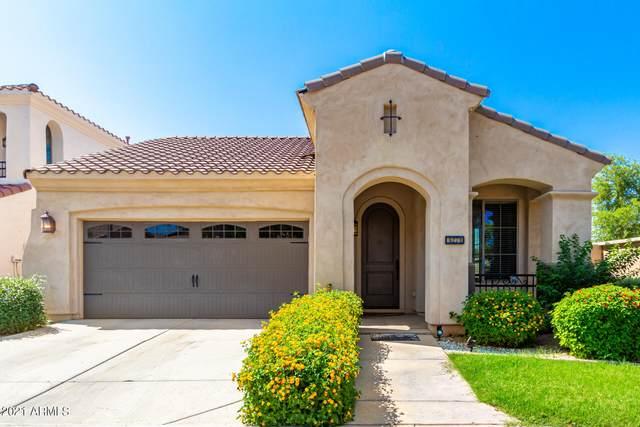 3271 E Windsor Drive, Gilbert, AZ 85296 (MLS #6273698) :: Yost Realty Group at RE/MAX Casa Grande