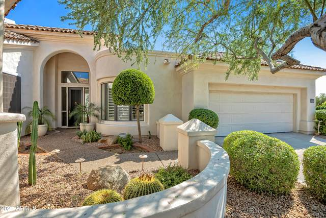 11709 E Terra Drive, Scottsdale, AZ 85259 (MLS #6273811) :: Yost Realty Group at RE/MAX Casa Grande