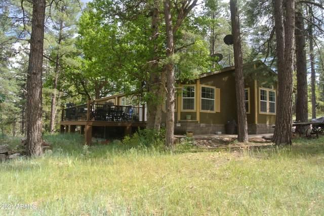 1075 E Ranch Road, Payson, AZ 85541 (MLS #6274533) :: Elite Home Advisors