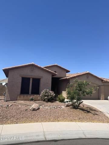 1302 S Tumbleweed Court, Chandler, AZ 85286 (MLS #6277303) :: Elite Home Advisors