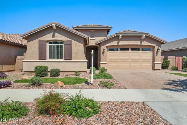 20702 E Mockingbird Drive, Queen Creek, AZ 85142 (MLS #6277791) :: My Home Group