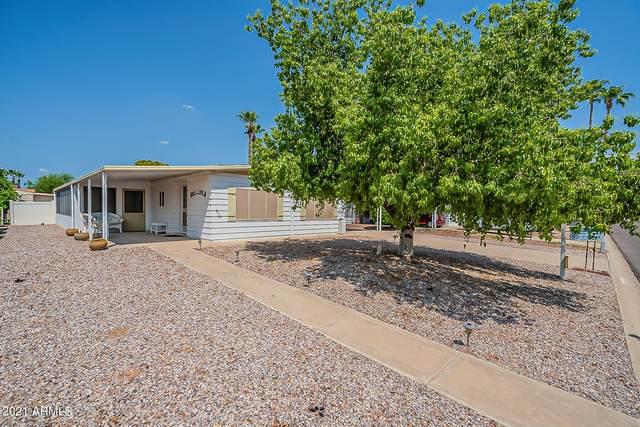 8912 E Utah Avenue, Sun Lakes, AZ 85248 (MLS #6279232) :: Elite Home Advisors