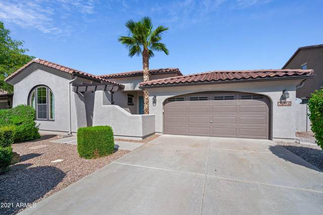 2954 S Colonial Street, Gilbert, AZ 85295 (MLS #6279260) :: The Everest Team at eXp Realty