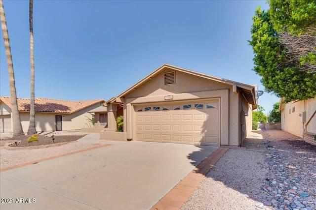 2360 Leisure World, Mesa, AZ 85206 (MLS #6280048) :: Klaus Team Real Estate Solutions